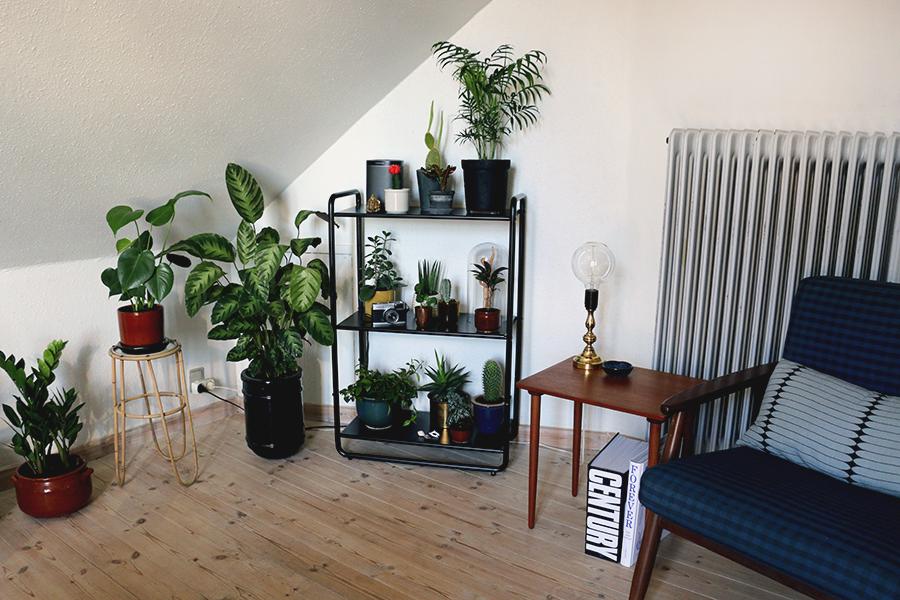 plante-rokering
