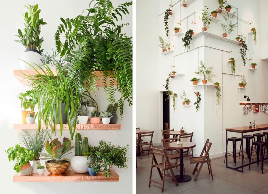plantevæg2