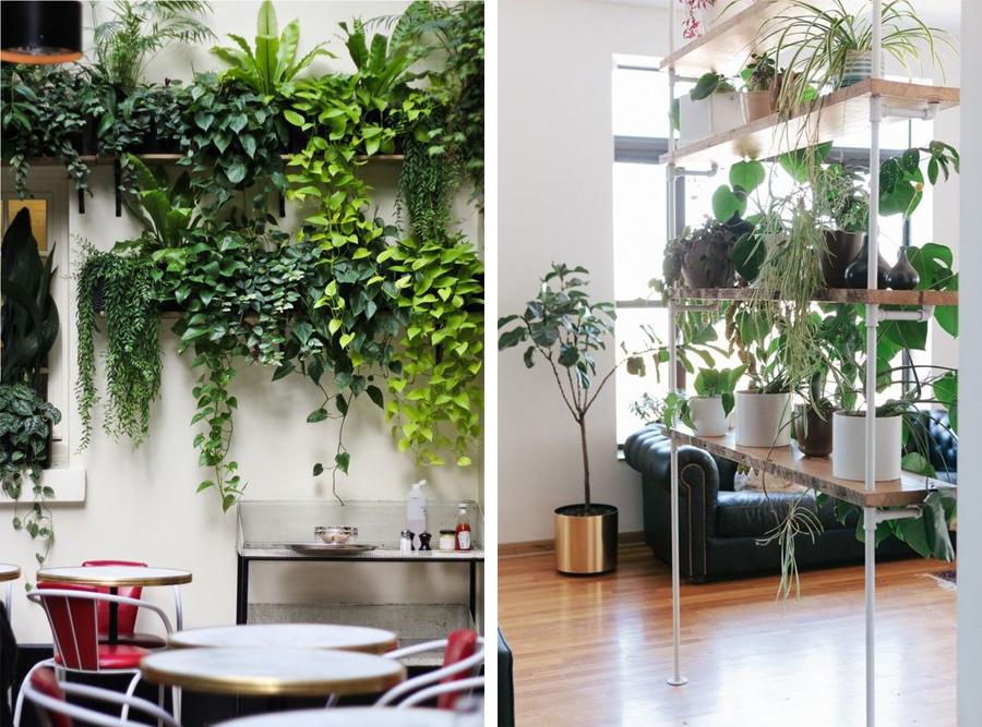 plantevæg3